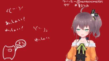 【Matsuri Channel 夏色まつり】年齢や前世(中の人)は?弟も気になる!サイコパスと噂の理由も動画から検証