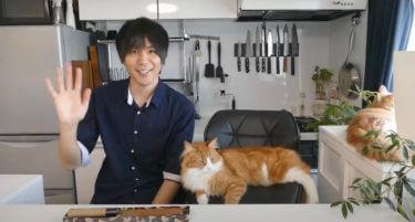 【JunsKitchen】本業や事務所・年収は?猫の情報や使用する包丁を調査!国際的なジュンの料理動画に海外の反応は